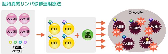 超特異的リンパ球群連射療法の説明